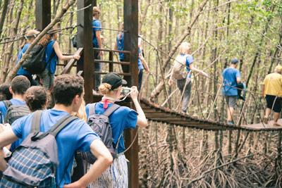 Kinder auf Klassenfahrt im Wald auf Holzbrücke
